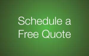 schedule a consultation button
